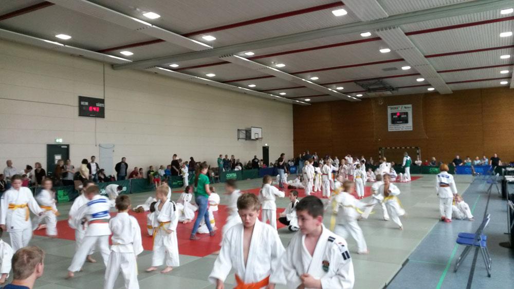 Judo_1_2015.jpg