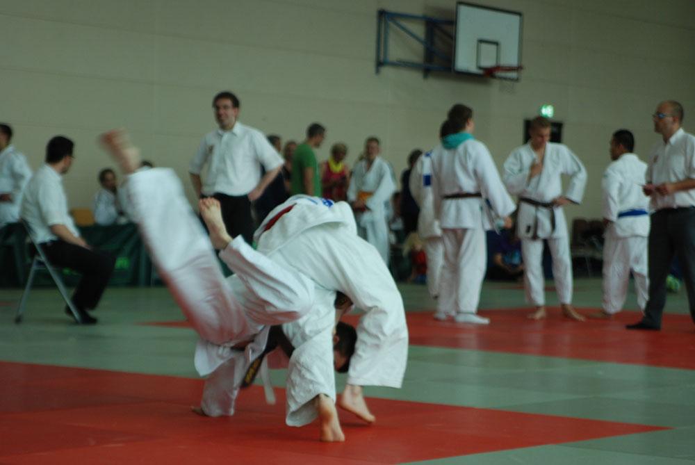 Judo_5_2015.jpg