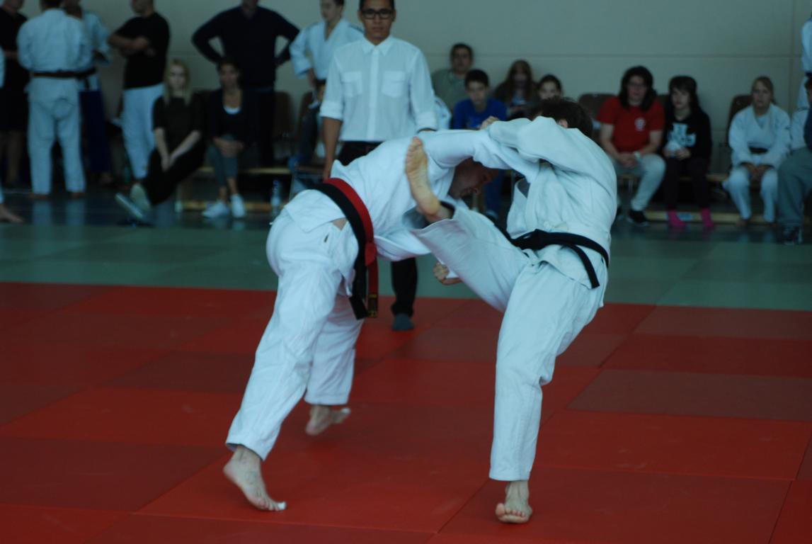 Judo14.JPG